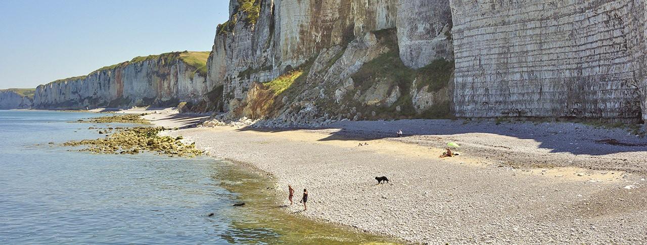 Camping Yport plage et falaises