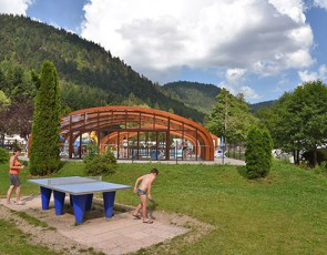 Campsites in france pitches holiday rentals flower for Piscine xonrupt longemer