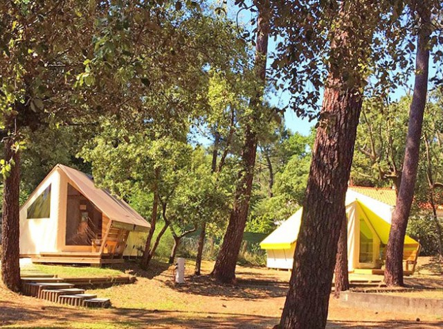Camping Saint Tro Park Oléron freeflowers-2