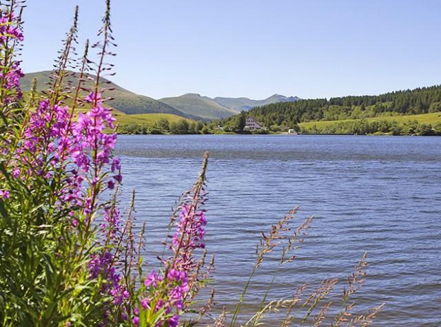 camping La Vallée Verte Lac de Guéry-3