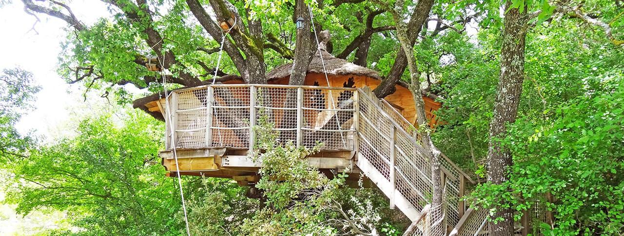 vignette slider panoramique cabane dans les arbres
